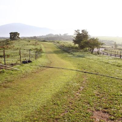 自然のトレーニングコース、素晴らしい環境